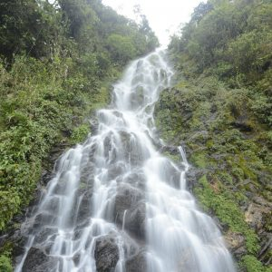 Latin America and climate change – watershed ecosystems