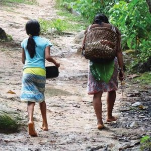 We have protected ecosystems in Peru including conserving the Amazon rainforest with the indigenous Awajun