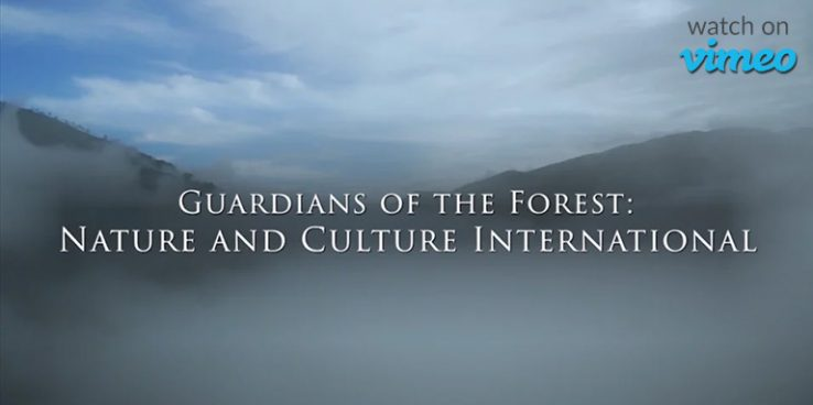 Guardians of the Forest Trailer on Vimeo