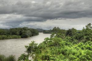 The Rio Napo, 200 miles from joining the Amazon.
